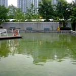 周末好去處 : 大埔海濱公園, 模型船水池