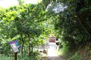 周末好去處 : 菠蘿霸自然教育徑