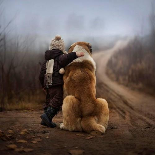 寵物褓姆‧冬至大溫暖