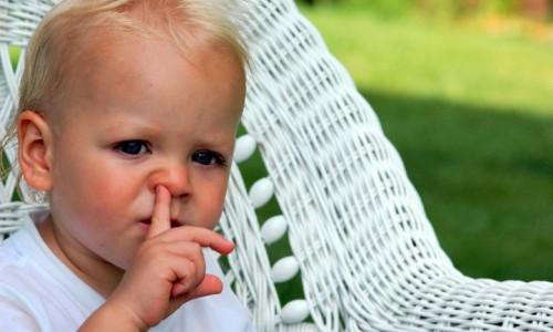 小朋友「鼻敏感」食療‧3大指引