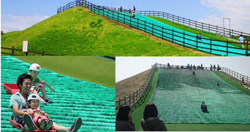 """日本好玩「山頭」公園, 44米草坪雪橇斜坡比你""""sir""""呀""""sir"""