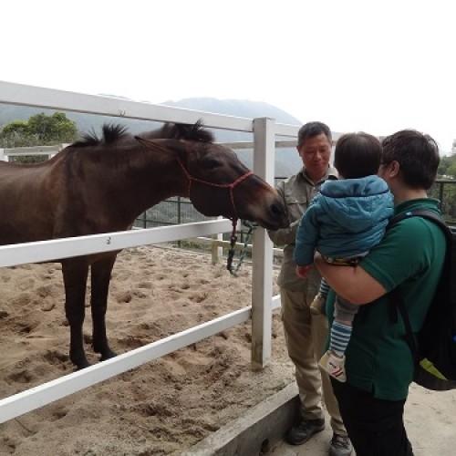 全年免費親子活動 · 動物全接觸@嘉道理農場
