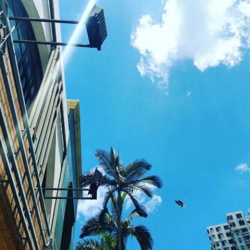 「為甚麼天空是藍色的?」–父母會怎樣回答?
