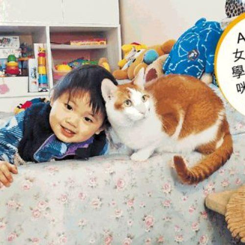 與孩共存 貓狗化身成長導師