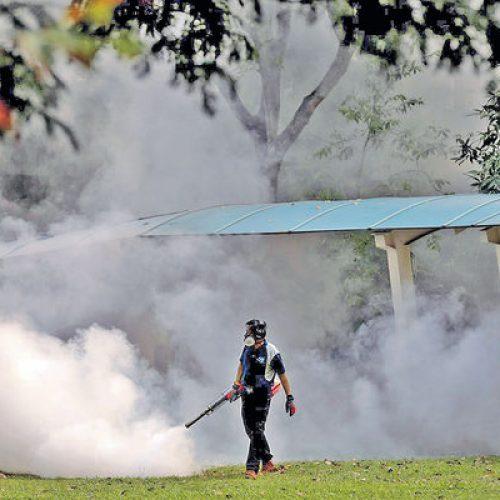 本地感染日增40宗 星洲寨卡急蔓延