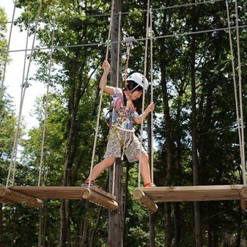 大阪「最大冒險森林」‧親子齊齊玩