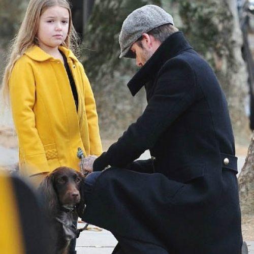 可愛哈七着鮮黃Chloe褸仔咬手指 同型爸放狗