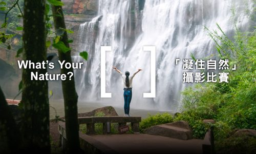 香港攝影師擠身TNC「凝住自然」全球100強, 快投票支持
